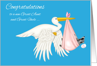 Congratulations on becoming Great Aunt and Great Uncle, grandniece card