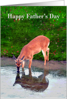 Father's Day, Deer taking a drink from a pond and seeing reflection card
