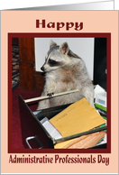 Administrative Professionals Day, Raccoon in file cabinet card
