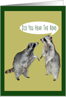 Announcement, raccoons card