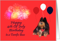Birthday On 4th Of July to Boss, Pomeranian watching fireworks, red card