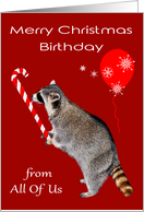 Birthday on Christmas from All Of Us, Raccoon eating candy cane, red card