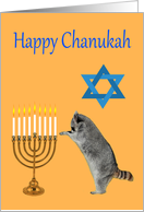 Chanukah, Raccoon praying by a menorah with a Star Of David card