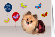 42nd Birthday, adorable Pomeranian surrounded by cute butterflies card
