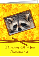 Thinking Of You Sweetheart, Raccoon sleeping in brown frame, flower card