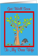 Get Well Soon To Wife, Raccoons with an apple tree card