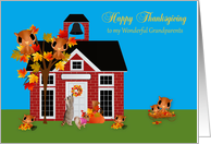 Thanksgiving to Grandparents, Raccoon and Pomeranian, owls, blue card