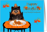 Thanksgiving to Grandparents, Pomeranian Pilgrim with pumpkin pie card