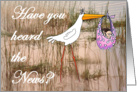 Have you heard the news? for girl, stork and baby. card