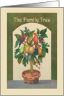 The family tree,welcome to the family, parrots, fruit, honeyeater. card