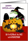 Happy Halloween , Witch with cat , spider and pumpkin,to everyone in our neighbourhood card