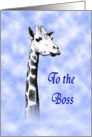 Happy Birthday to Boss, giraffe in clouds. card