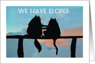 We have eloped,two black cats silhouettes card