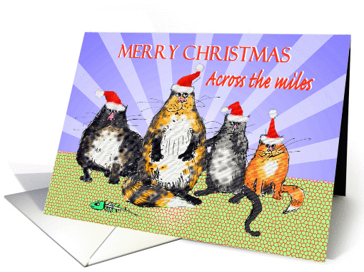 Merry Christmas across the miles, cats with Christmas... (1317632)