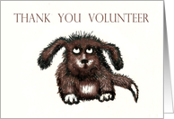 Thank You volunteer...