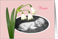 New baby, snowdrops,pink, photo frame card