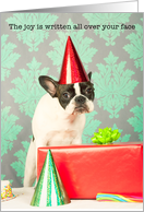 Birthday, French Bulldog in party hat with gift, Humor card