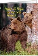 Happy Birthday to my best friend card, Two brown bear in forest card