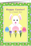 Boy - Happy Easter - Easter Bunny and Eggs card