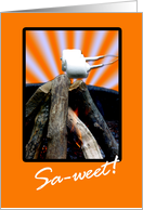 Have a sweet time at camp! marshmallows roasting card