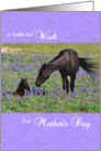 Mother's Day card Belated - Mustang Mare and Foal card