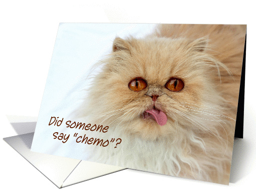 Cute Persian cat, chemotherapy, get well, Did someone say chemo? card