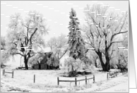 Frosty Farmstead - Stone house and trees blanketed by frost card