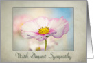 Cosmos Flower -With deepest sympathy - card