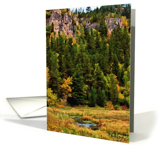 Autumn in Spearfish Canyon, South Dakota - all occasion... (738725)