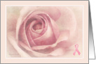 Soft Pink Rose with Breast Cancer Ribbon - Get Well card