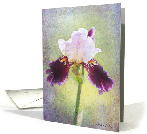 Purple Bearded Iris Flower - All Occasion Note card (941122)
