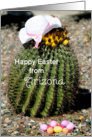 Happy Easter from Arizona, cactus card