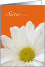 Sister Maid of Honor, white daisy with orange card