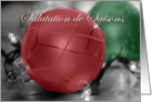 French Seasons Greetings, Red, Green Ornaments card