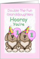 Twin Granddaughters 1st Birthday, Puppies card