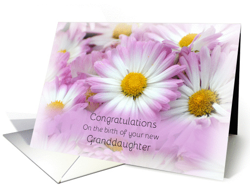 Congratulations on the birth of your new Granddaughter,... (1322706)