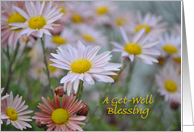 Pink Daisy Get-Well Blessing card