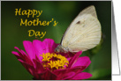 Happy Mother's Day - butterfly on flower card