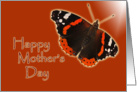 Happy Mother's Day - butterfly card