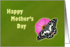 Happy Mother's Day - butterfly on pink flower card