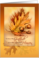 Thanksgiving Life of Gratitude, Autumn Leaves and Acorns, card