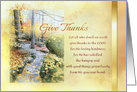 Give Thanks Happy Thanksgiving with Leafy Path and Fall Foliage card