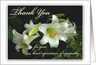 Thank You for Your Sympathy, White Lilies, Thanks for Condolences card