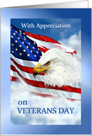 Happy Veterans Day Thank You to Veteran, American Flag & Eagle card