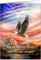 Veterans Day Thanks, Flying Eagle and American Flag card