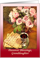 Granddaughter Passover Blessings, Pink Roses card