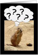 ????? Prairie Dog Perplexed - Groundhog Day Card