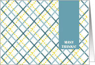 MANY THANKS! For the Baby Gift- Teal and Gold Plaid Greetings card