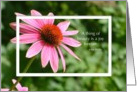 Thank You Dear Friend Echinacea Beauty and Joy card