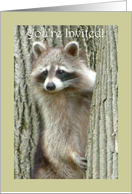 Father's Day Luncheon Invitation Raccoon card
